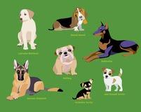 Комплект породы собак Стоковые Изображения