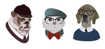 Комплект портретов собаки Стоковые Изображения