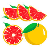 Комплект приносить оранжевая известка лимона грейпфрута Стоковое Изображение RF