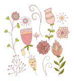 Комплект причудливых цветков Стоковая Фотография RF