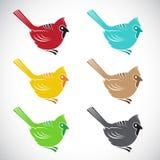 Комплект птицы вектора на белой предпосылке Стоковая Фотография RF