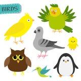 Комплект птицы бесплатная иллюстрация