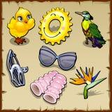 Комплект птиц и аксессуаров лета для женщин Стоковое Изображение