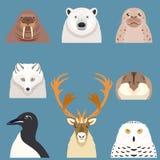 Комплект плоских ледовитых животных значков Стоковая Фотография RF