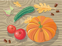 Комплект плодов сквоша осени, яблок, жолудей бесплатная иллюстрация
