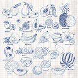 Комплект плодоовощей на бумаге Иллюстрация эскиза чертежа руки вектора Стоковые Фото