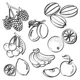 Комплект плодоовощ Стоковое Изображение RF