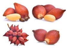 Комплект плодоовощ salak, zalacca salacca изолированного на белизне Стоковые Фото
