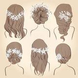 Комплект различных винтажных стилей причёсок стиля, wedding стилей причёсок Стоковая Фотография RF