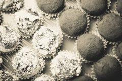 Комплект различных видов домодельных трюфелей шоколада тонизировано Стоковые Фото