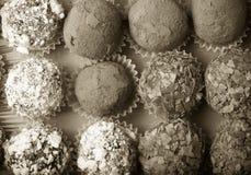 Комплект различных видов домодельных трюфелей шоколада тонизировано Стоковое Изображение