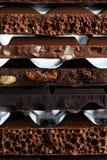 Комплект различных разнообразий шоколада с гайками, изюминками и f Стоковые Изображения RF