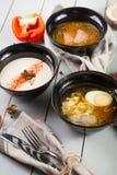 Комплект 3 различных супов Стоковое фото RF