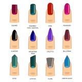 Комплект различных форм ногтей на белизне Значки формы ногтя Стоковые Изображения
