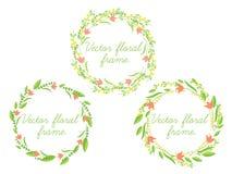 Комплект рамки вектора флористической Стоковая Фотография RF
