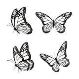 Комплект реалистических красочных бабочек изолированных на весна Стоковое Изображение RF