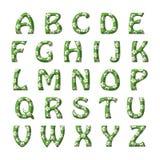 Алфавит травы и цветков установленный для детей Стоковое фото RF