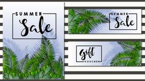 Комплект рогульки вектора для украшенных продажи и подарочного сертификата лета Стоковая Фотография
