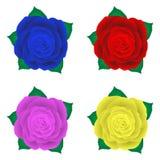 Комплект роз, розовая иллюстрация, голубая роза пинка красной розы желтая Стоковые Фото