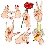 Комплект рук женщины Стоковое Изображение