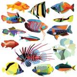 Комплект рыб иллюстрация штока