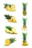 Комплект свежего ананаса приносить при отрезок изолированный на белизне иллюстрация штока