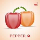 Комплект 2 свежих сладостных перцев красных и оранжевых Стоковые Фотографии RF