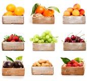 Комплект свежих фруктов стоковая фотография