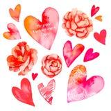 Комплект сердец и роз вектор Валентайн иллюстрации дня пар любящий Сердце акварели вектор камелия Стоковые Изображения