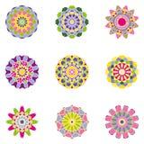 Комплект 9 симметричных флористических элементов Стоковые Фотографии RF