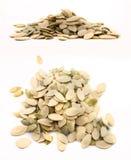 Комплект смешанных семян тыквы Стоковое фото RF