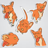 Комплект смешных красных собак Стоковые Фотографии RF