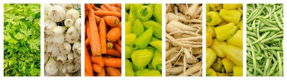 Комплект собрания свежих овощей Стоковые Фотографии RF