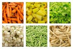 Комплект собрания свежих овощей Стоковое Изображение