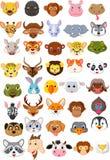 Комплект собрания шаржа животный головной Стоковые Изображения