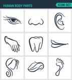 Комплект современных значков Человеческие части тела наблюдают нос, ухо, рука, зубы, рот, голова, язык, нога Черные знаки иллюстрация вектора