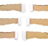 Комплект сорванной бумаги Стоковые Фотографии RF