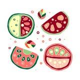 Комплект сочного вектора нарисованное рукой ребяческое, плодоовощи Милый детский арбуз с листьями, семенами, падениями Doodle, эс Стоковое фото RF
