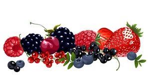 Комплект сочных ягод Стоковые Изображения RF