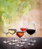 Комплект стекел с вином стоковая фотография