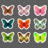 Комплект стикеров бабочек вектора Стоковое Изображение