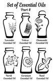 Комплект стилизованных бутылок с эфирными маслами Часть 2 Стоковое Фото