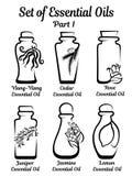Комплект стилизованных бутылок с эфирными маслами Стоковая Фотография