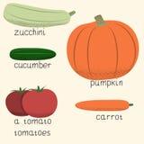 Комплект стилизованных овощей Стоковое Фото