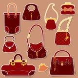 Комплект сумок и сумок женщины бесплатная иллюстрация
