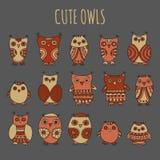 Комплект сычей и owlets шаржа в теплых цветах на серой предпосылке Стоковое фото RF