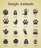 Комплект следов животного джунглей иллюстрация штока
