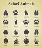 Комплект следов животного сафари Стоковые Изображения