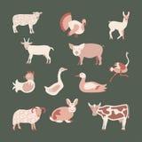 комплект фермы животных Стоковая Фотография RF