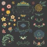 Комплект флористического дизайна Стоковое Изображение